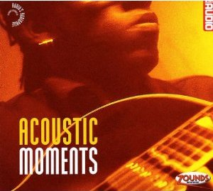 VA -Audio's Audiophile Vol.21 - Acoustic Moments (2003)